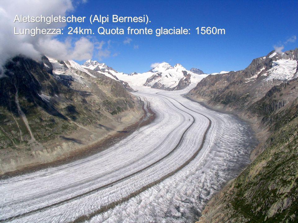 Aletschgletscher (Alpi Bernesi). Lunghezza: 24km. Quota fronte glaciale: 1560m