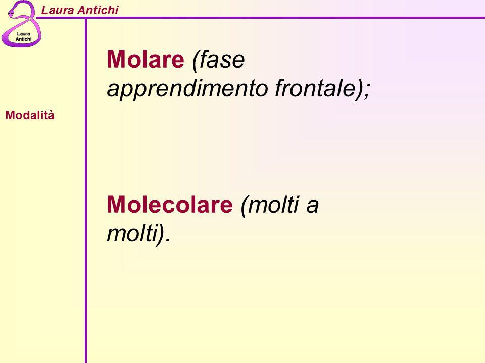 Laura Antichi Modalità Molare (fase apprendimento frontale); Molecolare (molti a molti).