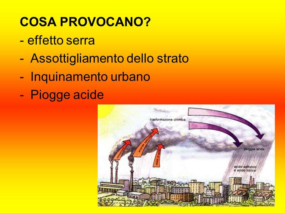 COSA PROVOCANO? - effetto serra -Assottigliamento dello strato -Inquinamento urbano -Piogge acide