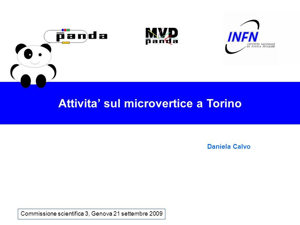 Attivita' sul microvertice a Torino Commissione scientifica 3, Genova 21 settembre 2009 Daniela Calvo