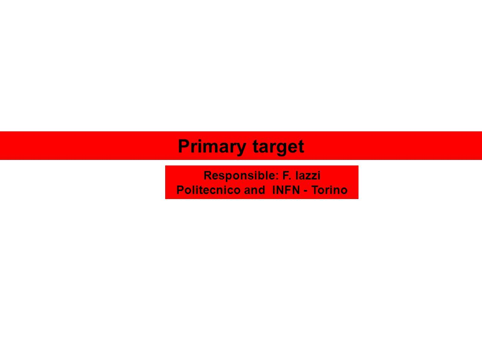 Primary target Responsible: F. Iazzi Politecnico and INFN - Torino