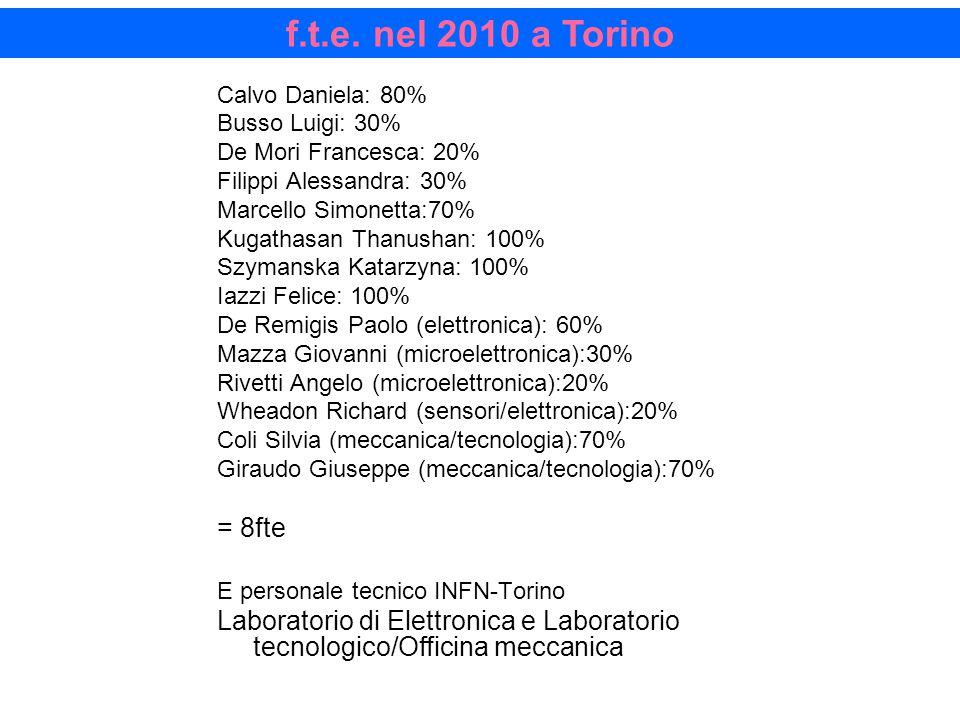 f.t.e. nel 2010 a Torino Calvo Daniela: 80% Busso Luigi: 30% De Mori Francesca: 20% Filippi Alessandra: 30% Marcello Simonetta:70% Kugathasan Thanusha