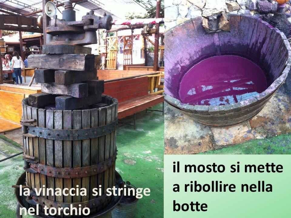 la vinaccia si stringe nel torchio il mosto si mette a ribollire nella botte