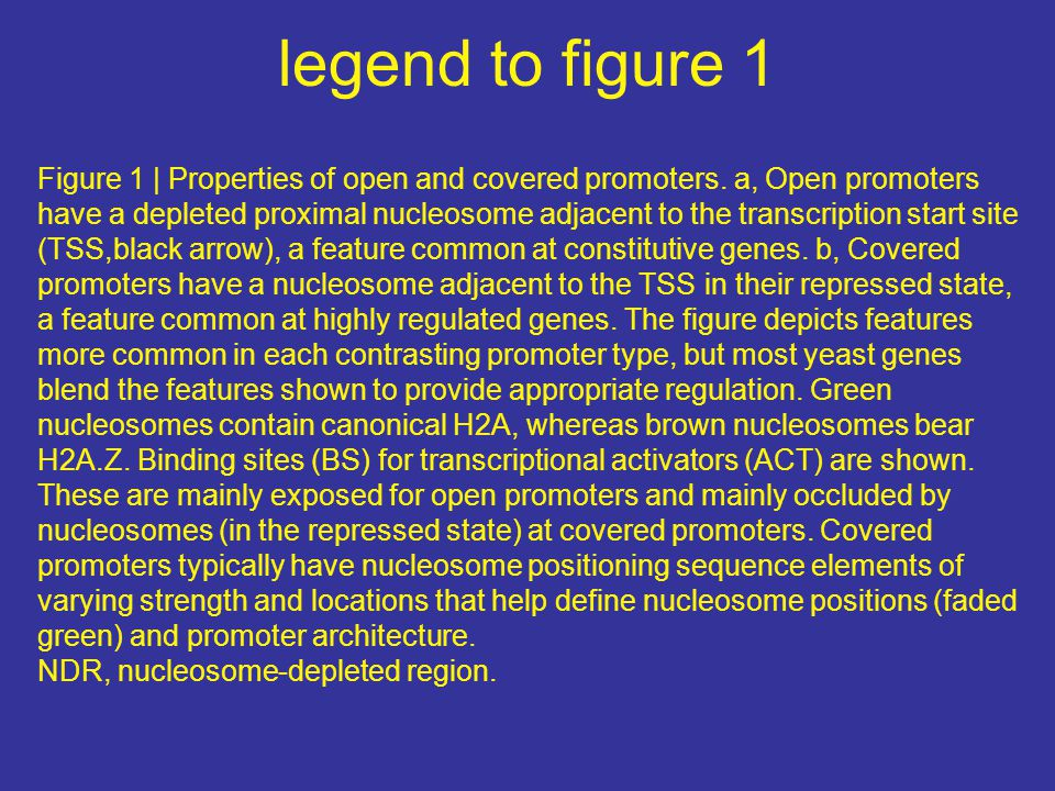 legend to figure 1 Figure 1 | Properties of open and covered promoters. a, Open promoters have a depleted proximal nucleosome adjacent to the transcri