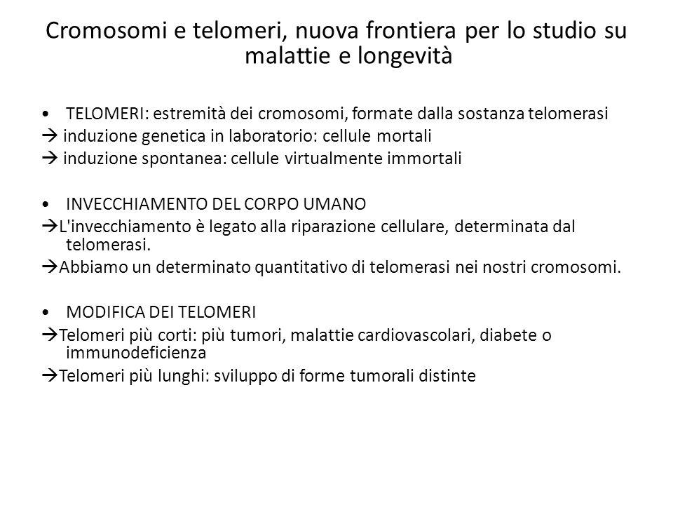 CONCLUSIONI Fattori invecchiamento cellulare:  genetica (telomeri, predisposizione alle malattie)  stile di vita e ambiente Esperimenti sui telomeri:  telomeri troppo corti: insorgenza di problemi (tumori, diabete, malattie cardiache)  telomeri troppo lunghi: insorgenza di tipi diversi di problemi (principalmente tumori)