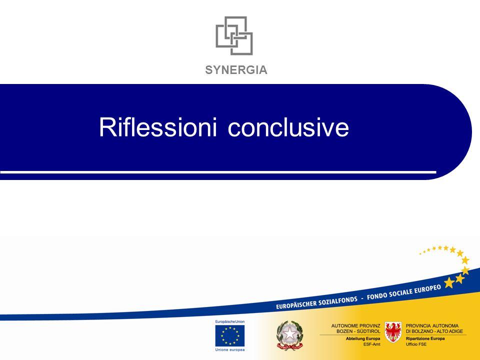 SYNERGIA Riflessioni conclusive