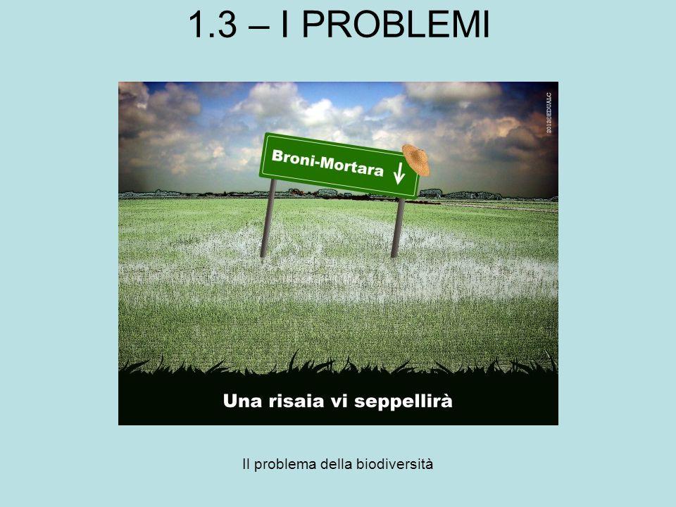 1.3 – I PROBLEMI Il problema della biodiversità