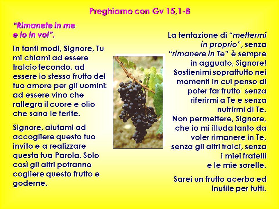"""Preghiamo con Gv 15,1-8 """"Rimanete in me e io in voi"""". In tanti modi, Signore, Tu mi chiami ad essere tralcio fecondo, ad essere io stesso frutto del t"""