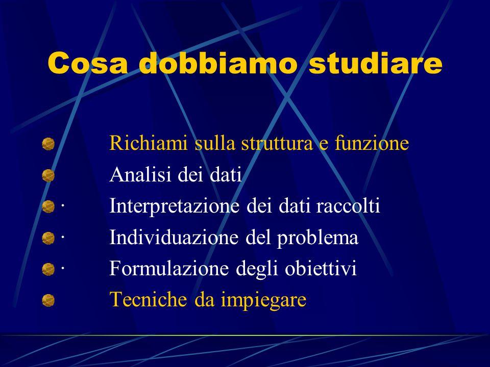 Cosa dobbiamo studiare Richiami sulla struttura e funzione Analisi dei dati · Interpretazione dei dati raccolti · Individuazione del problema · Formulazione degli obiettivi Tecniche da impiegare