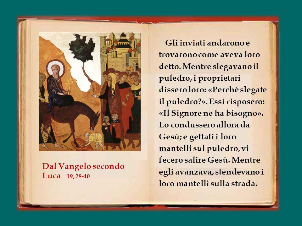 Papa Francesco Omelia della Messa nella Domenica della Passione o delle Palme Basilica di S. Pietro in Vaticano 24 marzo 2013 Papa Francesco Omelia de