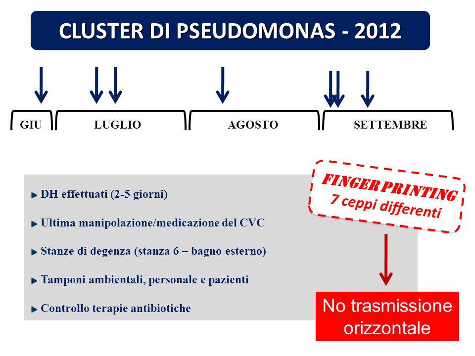LUGLIOAGOSTOSETTEMBRE CLUSTER DI PSEUDOMONAS - 2012 DH effettuati (2-5 giorni) Ultima manipolazione/medicazione del CVC Stanze di degenza (stanza 6 –