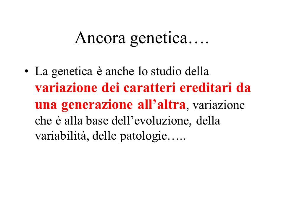 Ancora genetica…. La genetica è anche lo studio della variazione dei caratteri ereditari da una generazione all'altra, variazione che è alla base dell