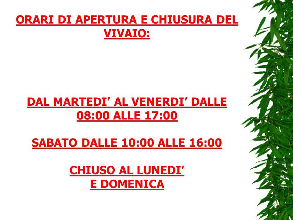 ORARI DI APERTURA E CHIUSURA DEL VIVAIO: DAL MARTEDI' AL VENERDI' DALLE 08:00 ALLE 17:00 SABATO DALLE 10:00 ALLE 16:00 CHIUSO AL LUNEDI' E DOMENICA