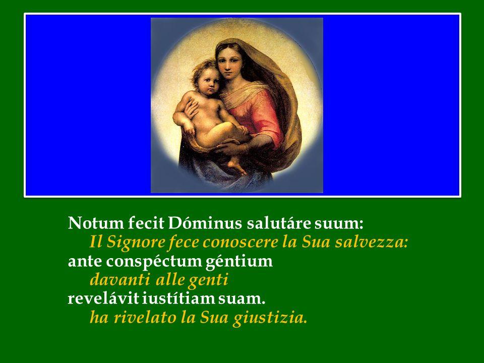 Benedetto XVI ha introdotto la preghiera mariana dell' Angelus Dopo la Messa in San Pietro nella solennità di Maria Santissima Madre di Dio 1 gennaio