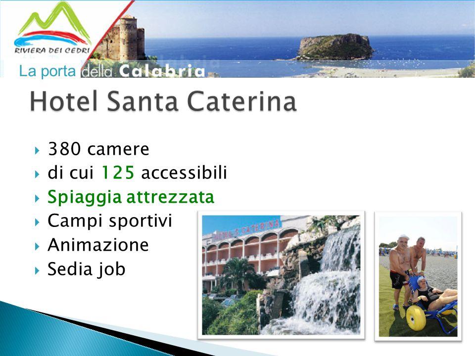  380 camere  di cui 125 accessibili  Spiaggia attrezzata  Campi sportivi  Animazione  Sedia job