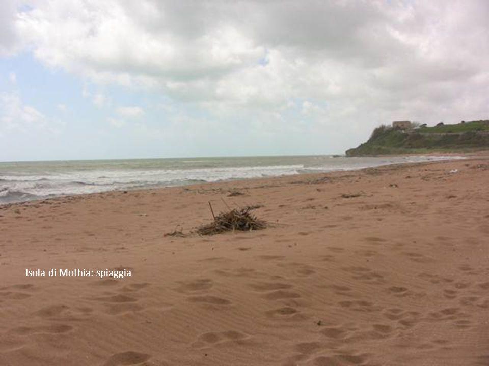 Isola di Mothia : altri scavi