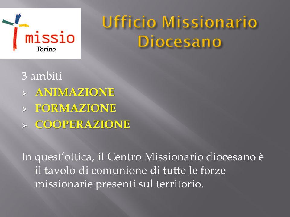 3 ambiti  ANIMAZIONE  FORMAZIONE  COOPERAZIONE In quest'ottica, il Centro Missionario diocesano è il tavolo di comunione di tutte le forze missiona
