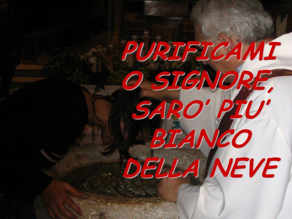 PURIFICAMI O SIGNORE, SARO' PIU' BIANCO DELLA NEVE