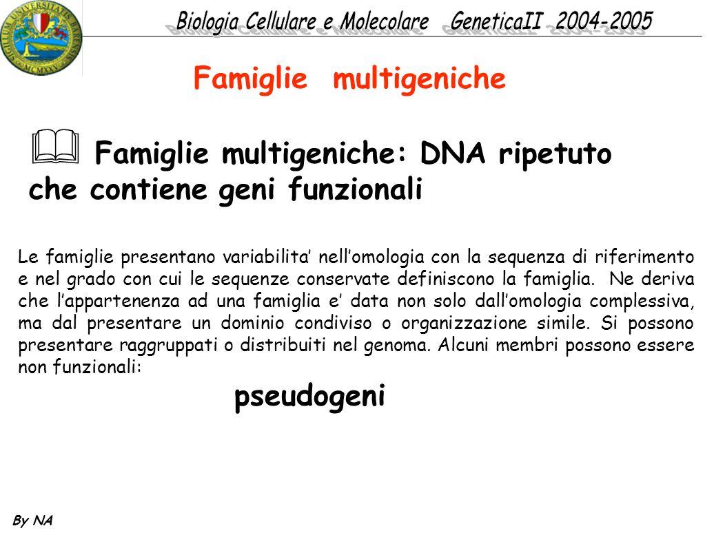By NA Famiglie multigeniche  Famiglie multigeniche: DNA ripetuto che contiene geni funzionali Le famiglie presentano variabilita' nell'omologia con l
