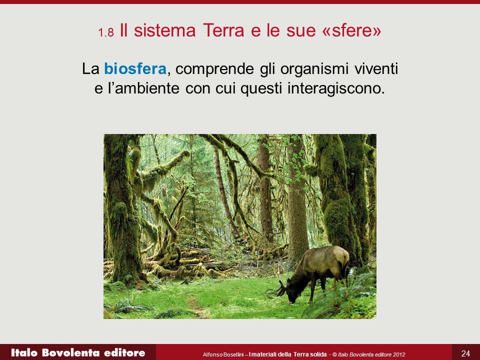 Alfonso Bosellini – I materiali della Terra solida - © Italo Bovolenta editore 2012 24 La biosfera, comprende gli organismi viventi e l'ambiente con c