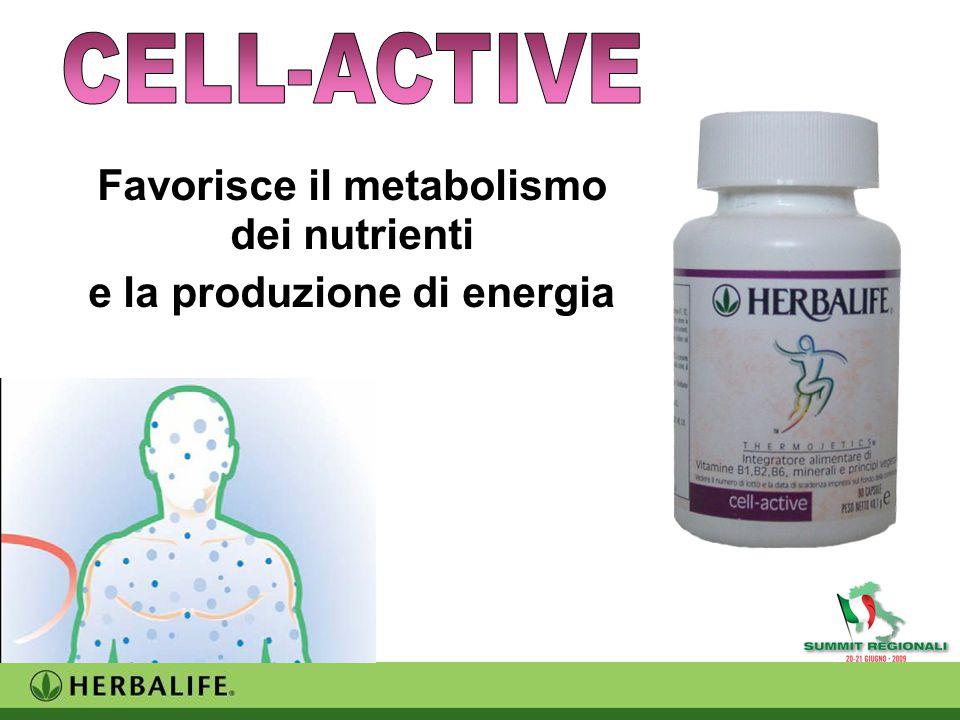 Favorisce il metabolismo dei nutrienti e la produzione di energia