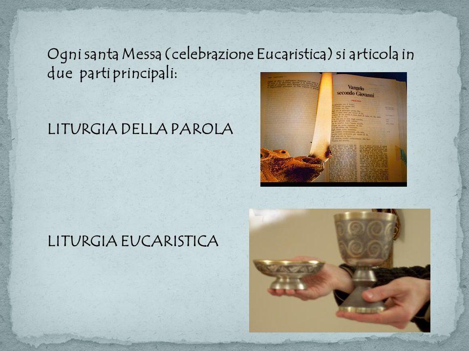 Ogni santa Messa (celebrazione Eucaristica) si articola in due parti principali: LITURGIA DELLA PAROLA LITURGIA EUCARISTICA