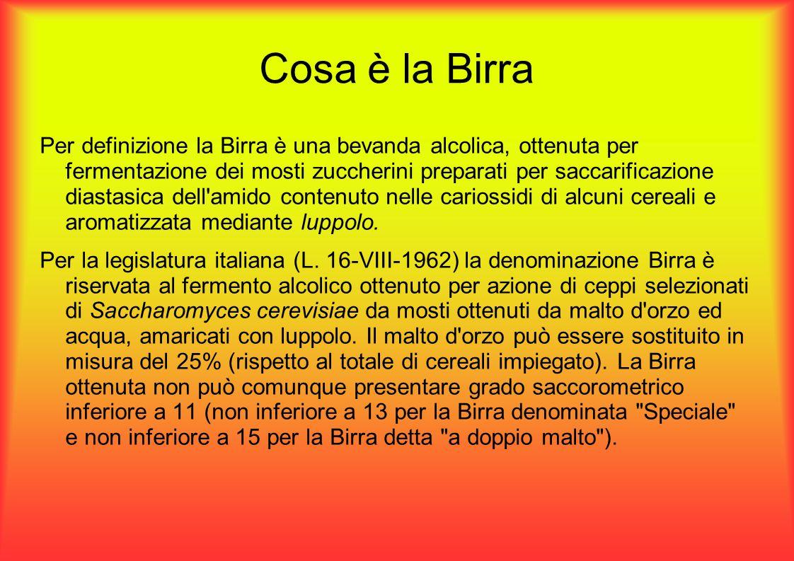 Cosa è la Birra Per definizione la Birra è una bevanda alcolica, ottenuta per fermentazione dei mosti zuccherini preparati per saccarificazione diastasica dell amido contenuto nelle cariossidi di alcuni cereali e aromatizzata mediante luppolo.