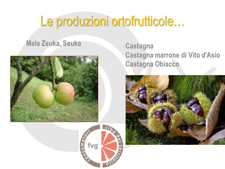 Le produzioni ortofrutticole… Mela Zeuka, Seuka Castagna Castagna marrone di Vito d Asio Castagna Obiacco