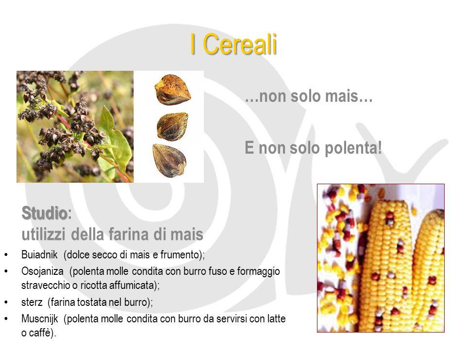I Cereali …non solo mais… E non solo polenta! Studio Studio: utilizzi della farina di mais Buiadnik (dolce secco di mais e frumento); Osojaniza (polen