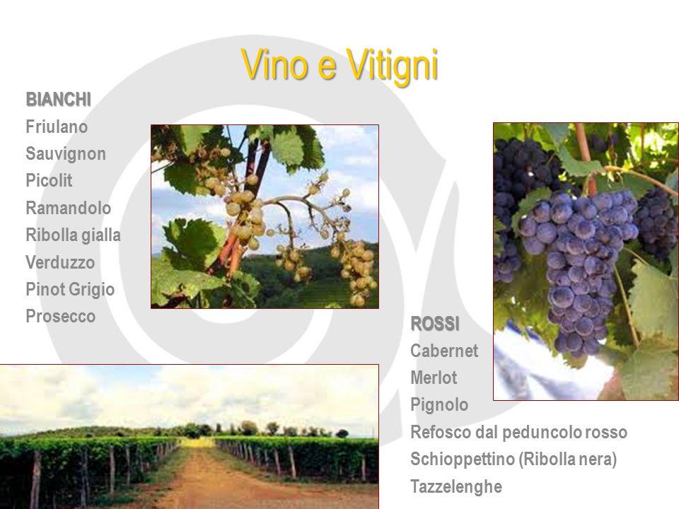 Vino e Vitigni BIANCHI Friulano Sauvignon Picolit Ramandolo Ribolla gialla Verduzzo Pinot Grigio Prosecco ROSSI Cabernet Merlot Pignolo Refosco dal pe