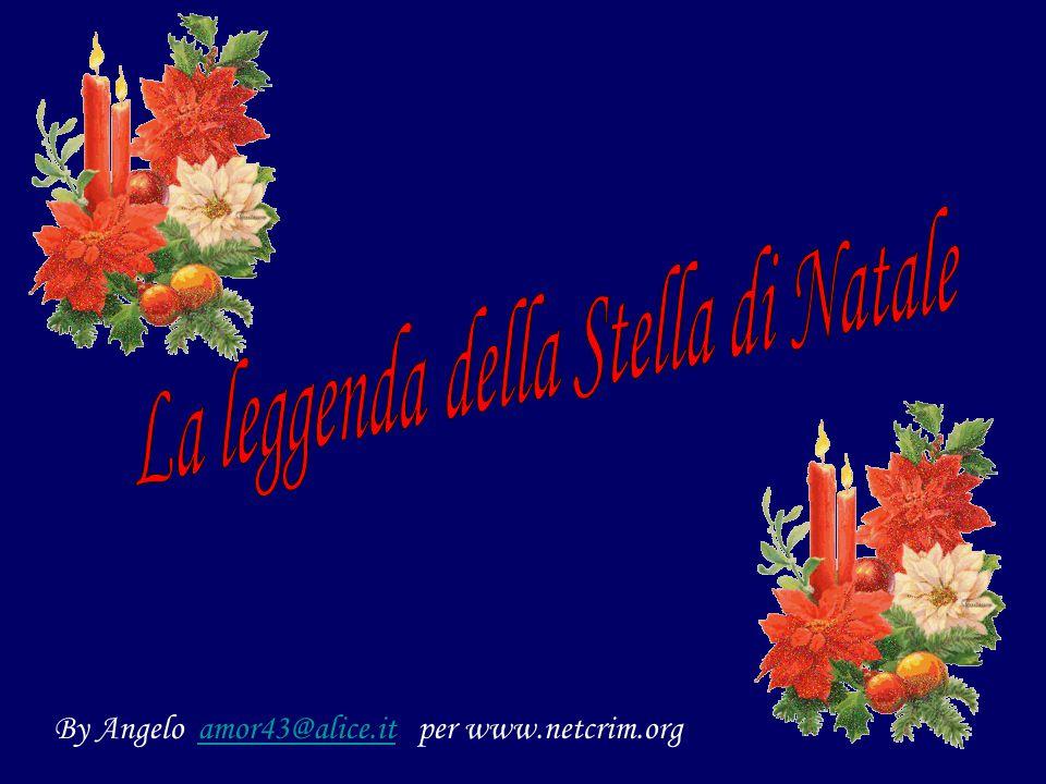 By Angelo amor43@alice.it per www.netcrim.orgamor43@alice.it
