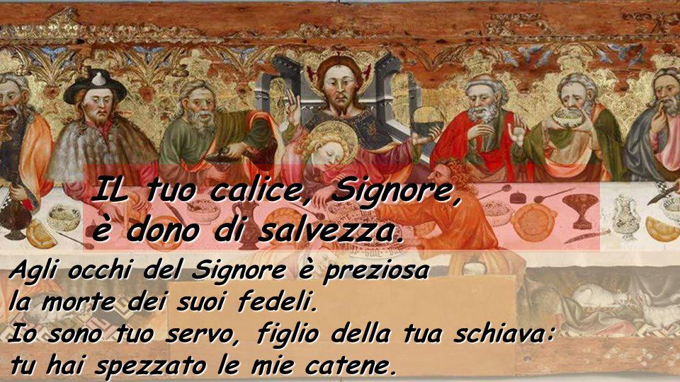 Tavoletta gotica della Santa Cena, di Jaume Ferrer (1450) Museo diocesano di Solsona Salmo 115 IL tuo calice, Signore, è dono di salvezza. Che cosa re