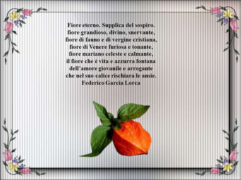 Poesie e fiori www.cassano-addaonmymind.it/