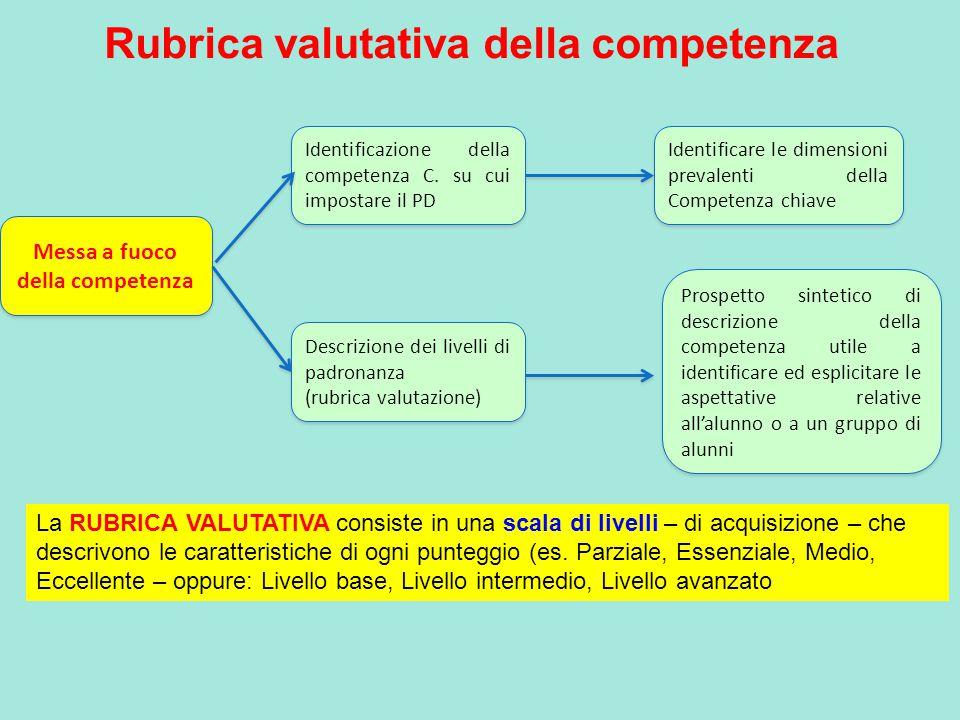 Rubrica valutativa della competenza Messa a fuoco della competenza Identificazione della competenza C.