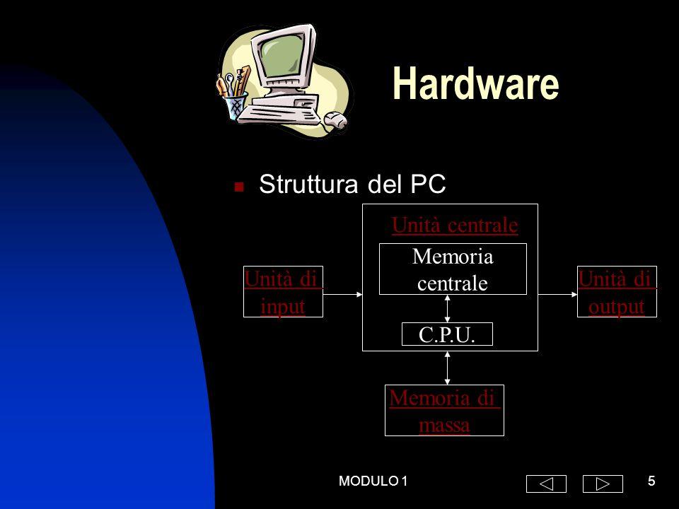 MODULO 15 Struttura del PC Hardware Unità di input Unità di output Memoria di massa Memoria centrale C.P.U.