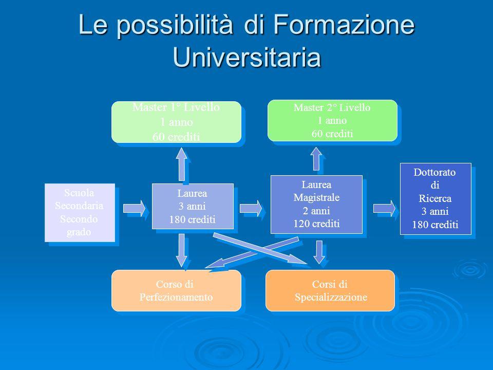 Le possibilità di Formazione Universitaria Scuola Secondaria Secondo grado Scuola Secondaria Secondo grado Laurea 3 anni 180 crediti Laurea 3 anni 180