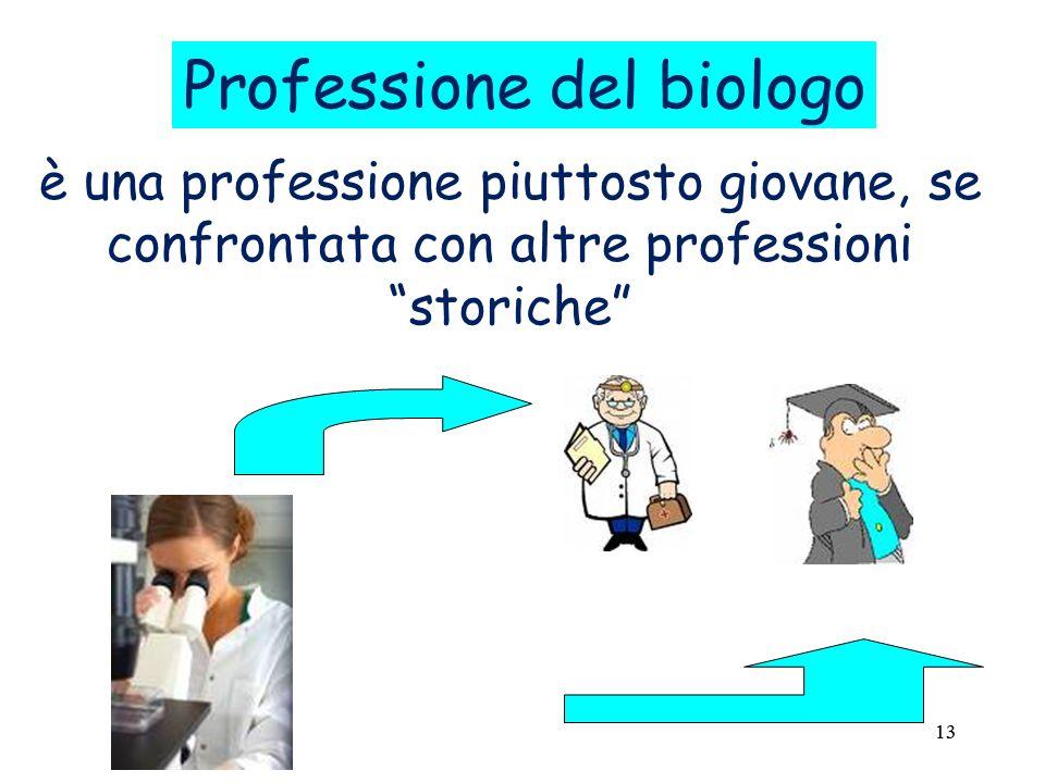 13 è una professione piuttosto giovane, se confrontata con altre professioni storiche Professione del biologo