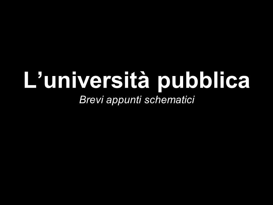 L'università pubblica Brevi appunti schematici