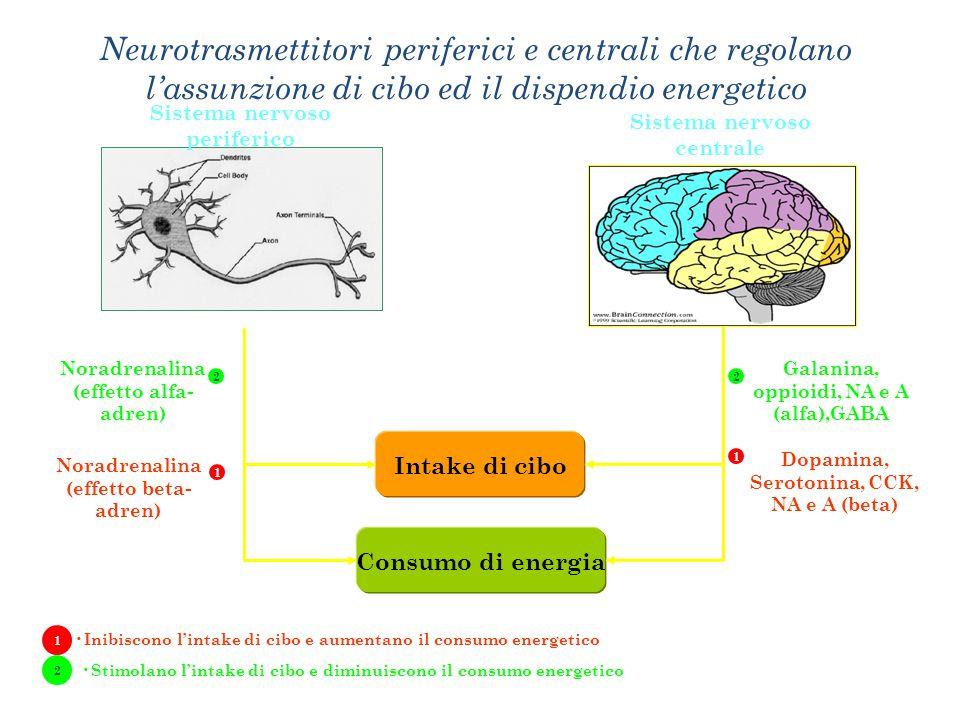 Sistemi coinvolti nel controllo dell'assunzione di cibo