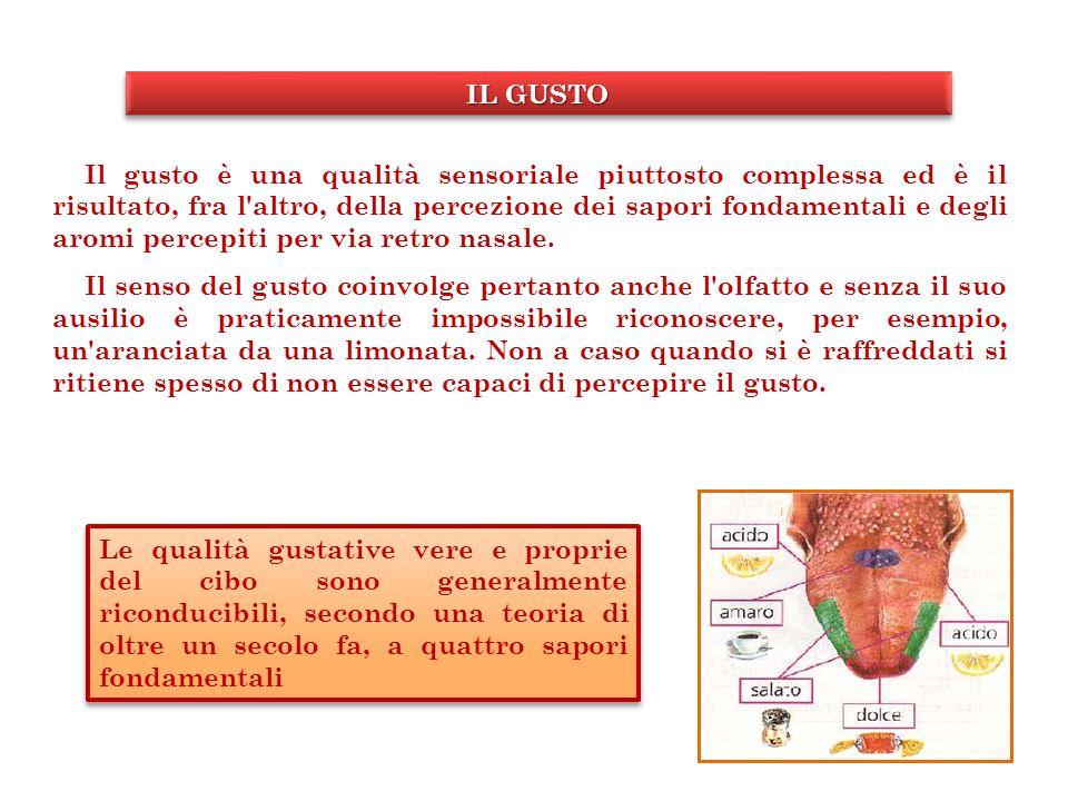Sistema nervoso periferico Sistema nervoso centrale Intake di cibo Consumo di energia Noradrenalina (effetto alfa- adren) Noradrenalina (effetto beta-