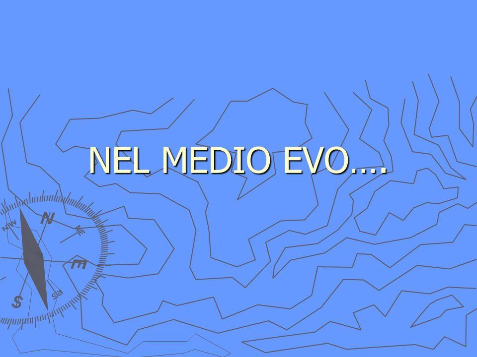 NEL MEDIO EVO….