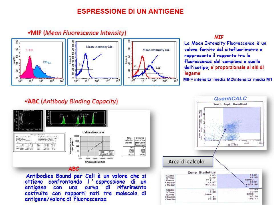 FL2-H Area di calcolo MIF (Mean Fluorescence Intensity) MIF (Mean Fluorescence Intensity) ABC (Antibody Binding Capacity) ABC (Antibody Binding Capaci