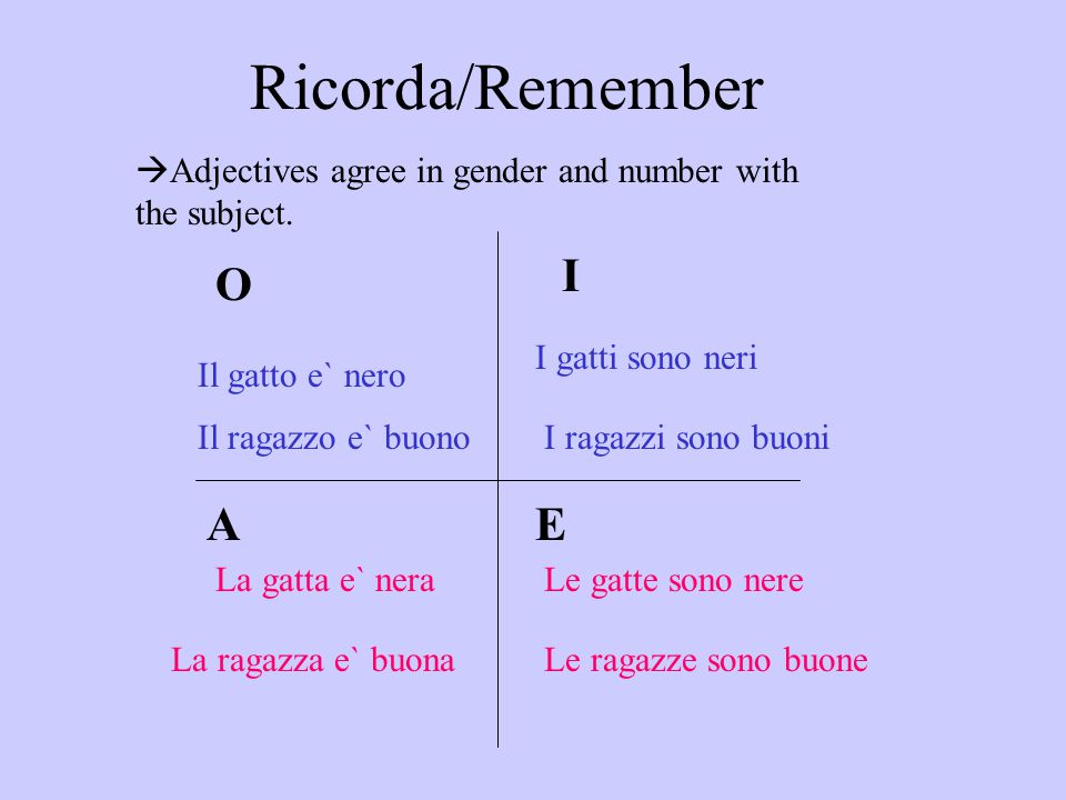 Ricorda/Remember  Adjectives agree in gender and number with the subject. Il gatto e` nero La gatta e` nera I gatti sono neri Le gatte sono nere O I
