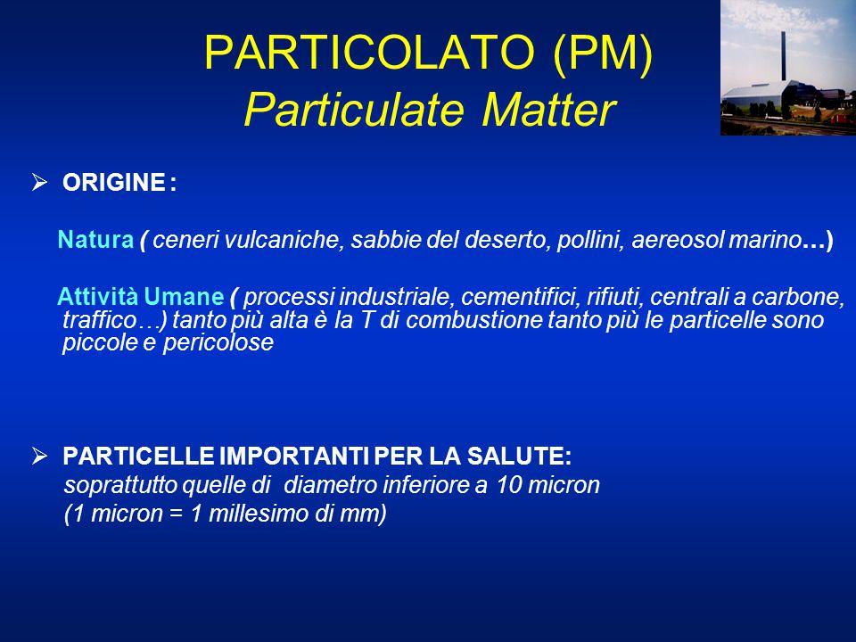 PARTICOLATO (PM) Particulate Matter  ORIGINE : Natura ( ceneri vulcaniche, sabbie del deserto, pollini, aereosol marino…) Attività Umane ( processi i