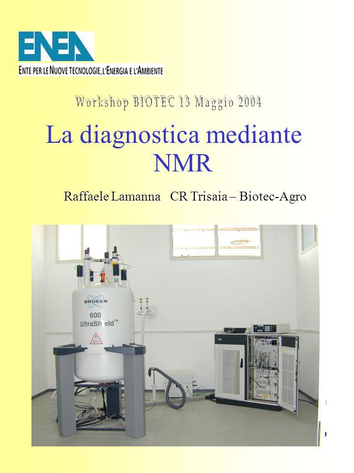 1 La diagnostica mediante NMR Raffaele Lamanna CR Trisaia – Biotec-Agro