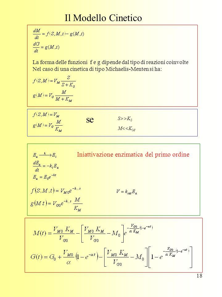 18 Il Modello Cinetico La forma delle funzioni f e g dipende dal tipo di reazioni coinvolte Nel caso di una cinetica di tipo Michaelis-Menten si ha: se M<<K M.