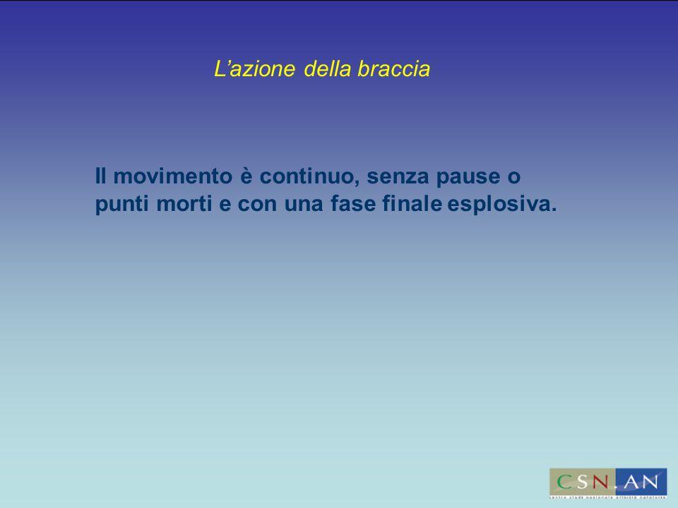 L'azione della braccia Il movimento è continuo, senza pause o punti morti e con una fase finale esplosiva.
