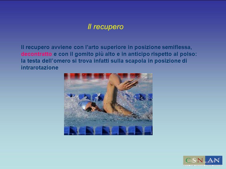 Il recupero avviene con l arto superiore in posizione semiflessa, decontratto e con il gomito più alto e in anticipo rispetto al polso: la testa dell'omero si trova infatti sulla scapola in posizione di intrarotazione Il recupero
