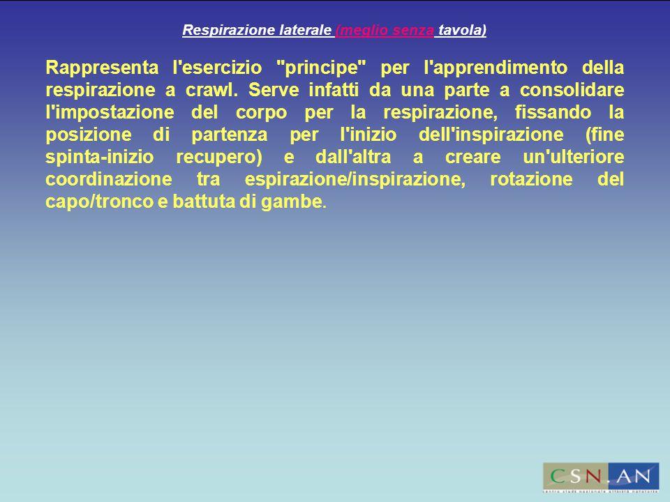 Respirazione laterale (meglio senza tavola) Rappresenta l esercizio principe per l apprendimento della respirazione a crawl.