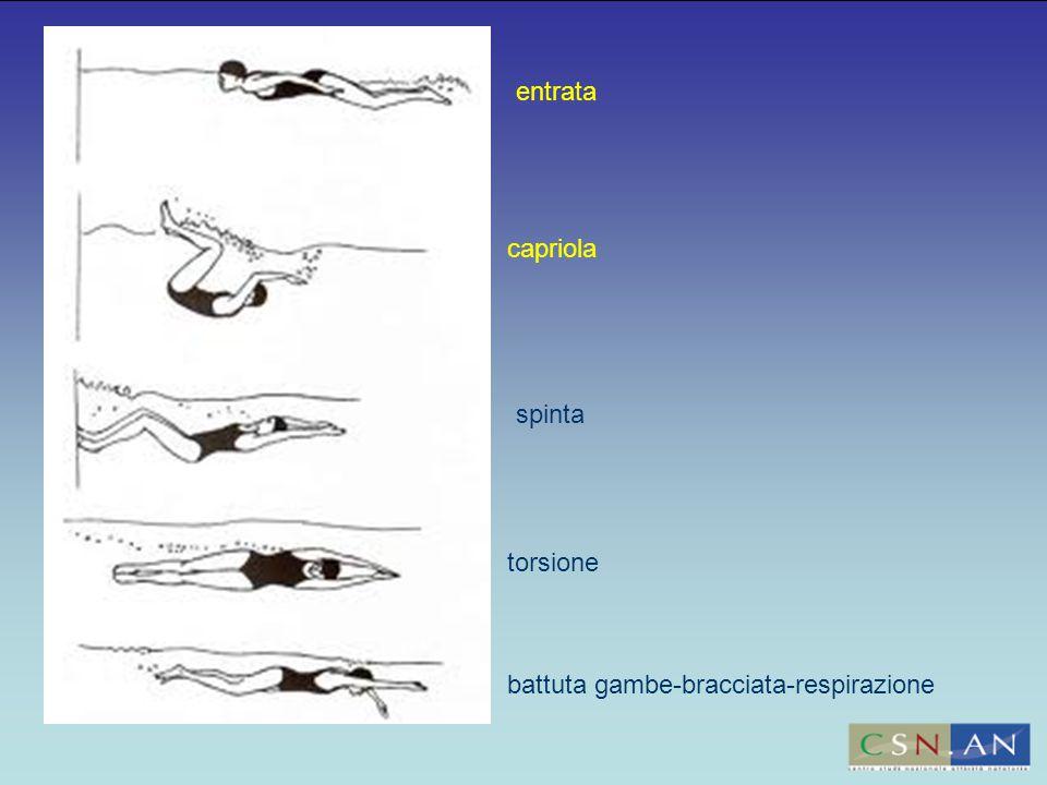 entrata capriola spinta torsione battuta gambe-bracciata-respirazione